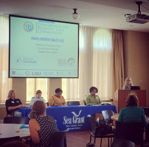Melissa Finucane, Director of CRGC, presents during panel discussion about community resilience.